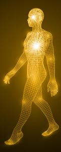 Kroppens energi